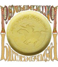 Cover Neil Young / Crazy Horse - Psychedelic Pill [DVD]
